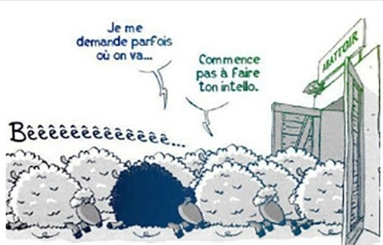 France : STOPPONS les délires transhumanistes VIA les Lois Martiales Médicales