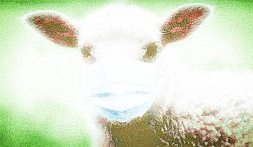 mouzombie masqué jusqu'au vaccin