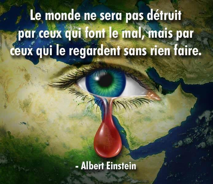 Albert Einstein ceux qui regarde sans rien faire