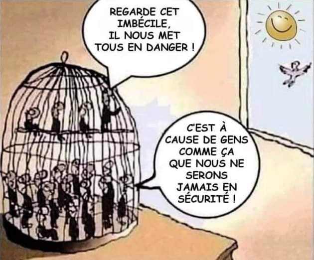 cage ou liberte