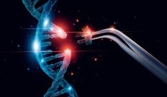 ADN coupage recombinage