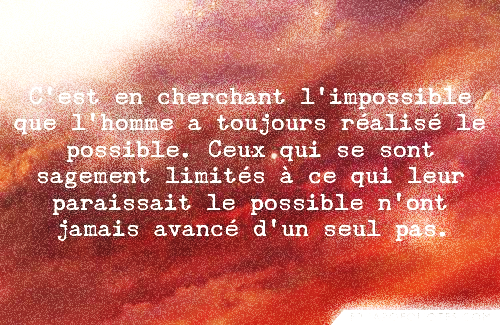 ALIMPOSSIBLE POSSIBLE BAKOUNINE