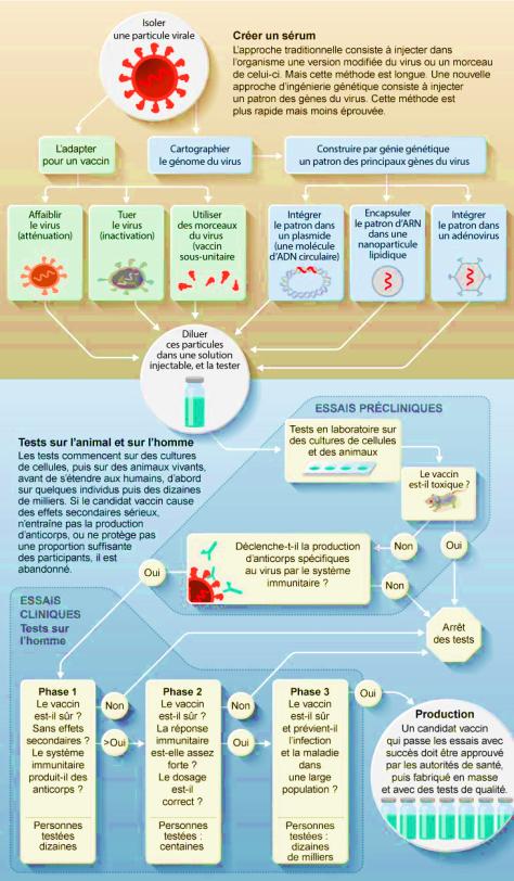 process vaccin contre le covid