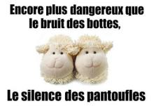 Les-Français-ont-une-fois-de-plus-chaussé-leurs-pantoufles-en-Mouton-de-Panurge..